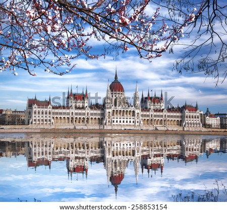 Famous Parliament with blossomed tree in Budapest, Hungary - stock photo