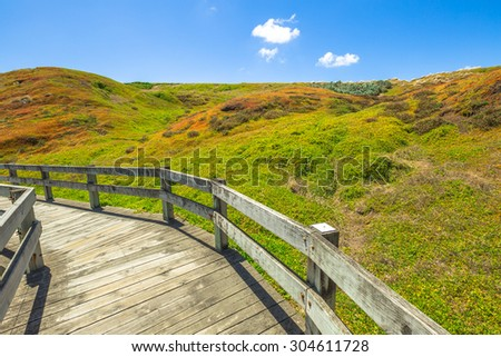 Famous trail in the spectacular colors of the vegetation in the summer in the Phillip Island Nature Park, The Nobbies, Phillip Island, Victoria, Australia. - stock photo