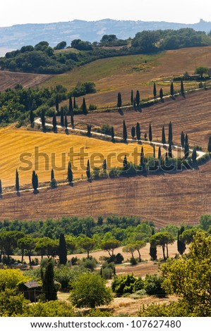 Famous winding road with cypresses in Val d'Orcia (SIena, Tuscany, Italy) at summer - stock photo