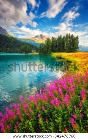 Fantastic azure alpine lake Champfer. Unusual and picturesque scene. Location famous resort Silvaplana village, district of Maloja in the Swiss canton of Graubunden, Alps. Europe. Beauty world. - stock photo