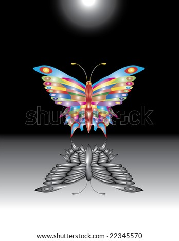 Fantastic colorful butterfly under the dark moon. - stock photo