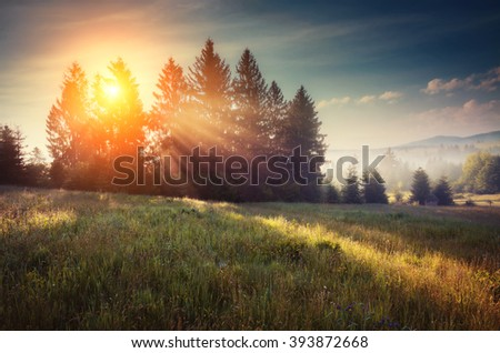 Fantastic day with blooming hills in warm sunlight at twilight. Dramatic and picturesque morning scene. Location place: Carpathian, Ukraine, Europe. Artistic picture. Beauty world. Soft filter effect. - stock photo