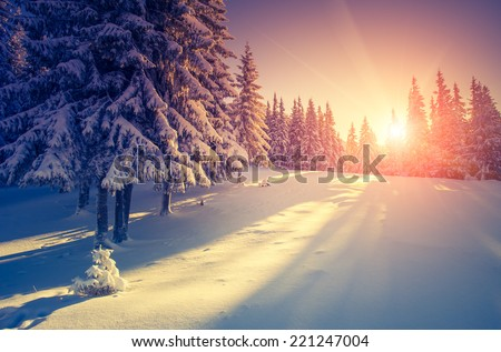 Fantastic evening landscape in a colorful sunlight. Dramatic wintry scene. National Park Carpathian, Ukraine, Europe. Beauty world. Retro style filter. Instagram toning effect. Happy New Year! - stock photo