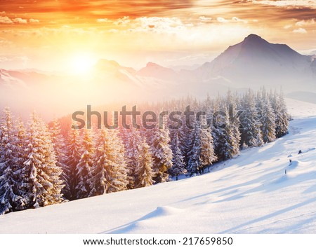 Fantastic evening winter landscape. Dramatic wintry scenery. Creative collage. National Park, Swiss, Europe. Beauty world. Retro style filter. Instagram toning effect. Happy New Year! - stock photo