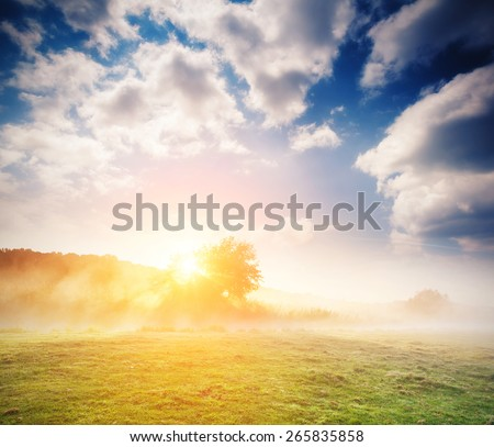 Fantastic foggy river with fresh green grass in the sunlight. Dramatic unusual scene. White cumulus clouds. Seret river, Ternopil. Ukraine, Europe. Beauty world. Vintage soft filter.