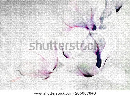 Fantastic gentle abstract monochrome flowers of magnolia  on textural background.  White petals and buds on a gray background with lilac and purple accents.
