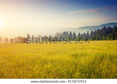 Fantastic green hills glowing by sunlight at twilight. Dramatic morning scene. Location place Carpathian, Ukraine, Europe. Artistic picture. Beauty world. Retro and vintage style. Instagram toning.