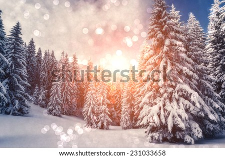 Fantastic mountain landscape glowing by sunlight. Dramatic wintry scene. Carpathian, Ukraine, Europe. Beauty world. Retro filter. Instagram toning effect. Happy New Year! - stock photo