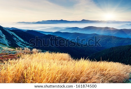 Fantastic sunny day is in mountain landscape. Carpathian, Ukraine, Europe. Beauty world. - stock photo