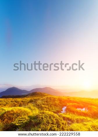 Fantastic sunny hills glowing by sunlight. Dramatic morning scene. Carpathian, Ukraine, Europe. Beauty world. - stock photo