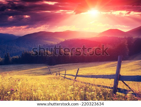 Fantastic sunny hills glowing by sunlight. Dramatic scenery. Carpathian, Ukraine, Europe. Beauty world. Retro style filter. Instagram colorful toning effect.  - stock photo