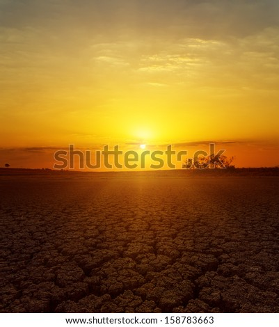 fantastic sunset over desert