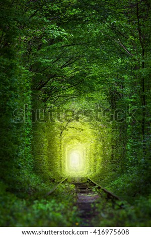 Fantastic Trees - Tunnel of Love with fairy light afar, magic background - stock photo