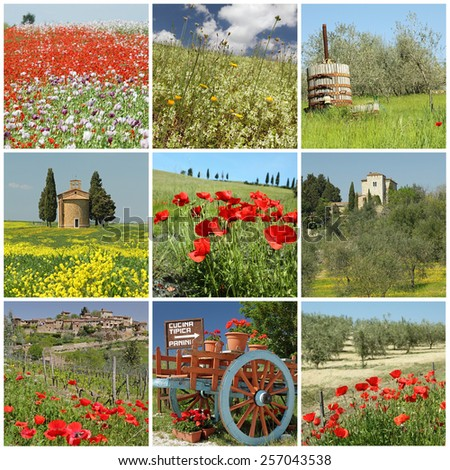 fantastic tuscan spring  collage - stock photo