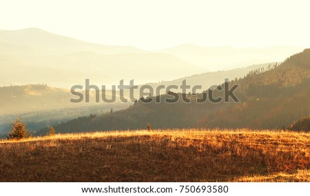 Fantastic view on the sunny mountain valley in autumn - morning sunrise in the Carpathians