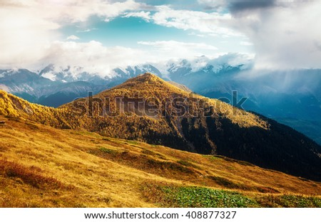Fantastic views of the magical place at the foot of Mt. Ushba. Picturesque scene. Location famous resort Mestia, Upper Svaneti, Georgia, Europe. High Caucasus ridge. Artistic picture. Beauty world.