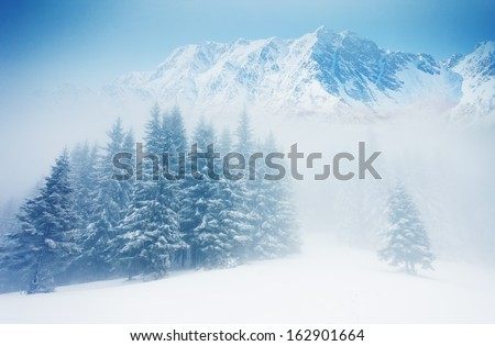 Fantastic winter landscape and blue sky. Creative collage. Beauty world. - stock photo