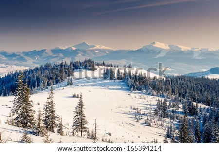 Fantastic winter landscape. Carpathian, Ukraine, Europe. Beauty world. - stock photo