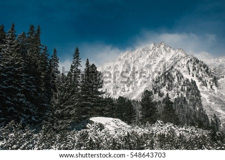 Fantastic winter landscape. Dramatic overcast blue sky. High Tatras, Slovakia