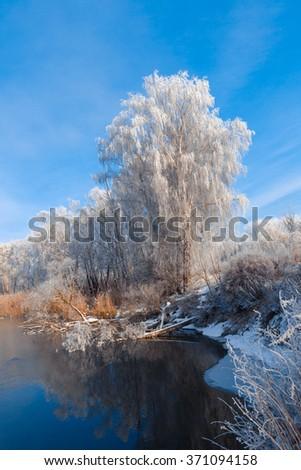 fantastic winter landscape. frost on birch, blue sky reflected in winter river. Frosty fabulous views. - stock photo