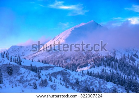 Fantastic winter landscape with snowy trees. Carpathians, Ukraine, Europe. - stock photo
