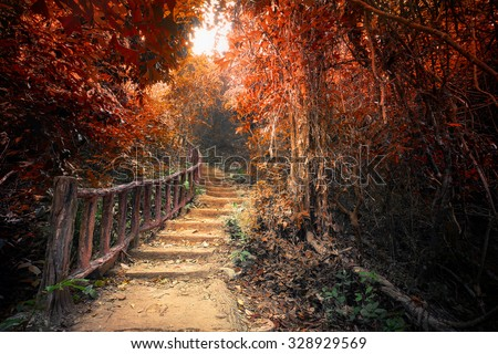 Fantasy Forest Autumn Surreal Colors Road Stock Photo