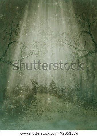 Fantasy forest with fog and big trees - stock photo