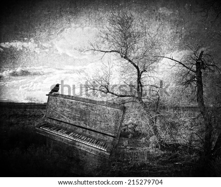 Fantasy image with a crow sitting on an old piano in the desert with textures for an artistic look in black and white - stock photo