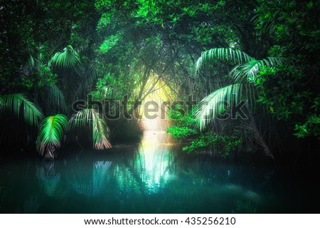 Fantasy jungle landscape of turquoise tropical lake in mangrove rain forest with tunnel and path way through lush. Sri Lanka nature and travel destinations - stock photo