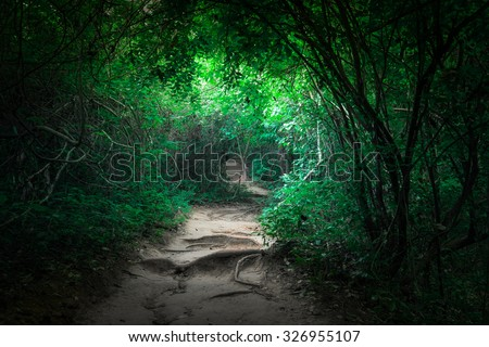 Fantasy landscape of tropical jungle forest with tunnel and path way through lush