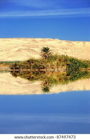Farafra oasis in the Sahara, lake in the desert, Egypt - stock photo