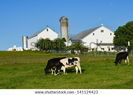 [Image: stock-photo-farm-141124423.jpg]