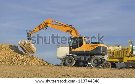 farm equipment when transporting sugar beet - stock photo