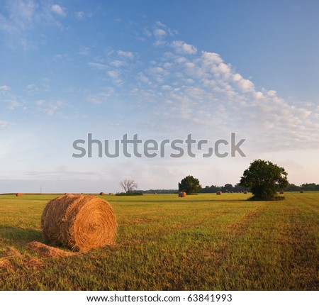 Farm field in Kansas with rolled grass, sunrise - stock photo
