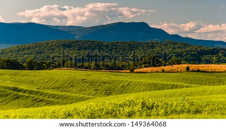 Farm fields and view of Massanutten Mountain in the Shenandoah Valley, Virginia. - stock photo