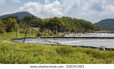 Farm for breeding lobsters on the island of Koh Chang in Thailand