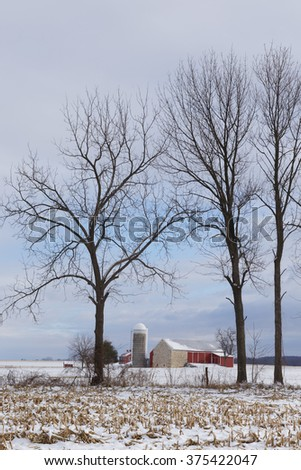 Farm framed by bare trees in winter