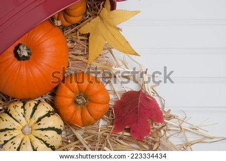 Farm fresh squash, pumpkins and fall leaves with straw and a basket - copy space - stock photo