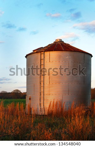 Farm, grain silo with corrugated metal.  Against a blue sky and brown grass.