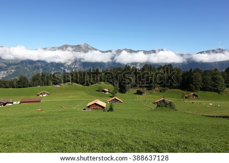 Farm in the alps in the Bernese Oberland, Switzerland - stock photo