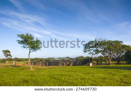 Farm landscape with curral gado background Brazil countryside - stock photo