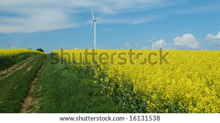 farm of winturbines close to rapeseed field France