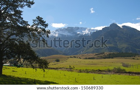 Farm scene in the Overberg - South Africa - stock photo