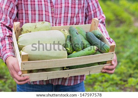 farmer carries freshly picked produce - stock photo