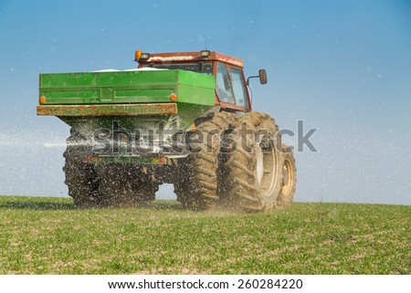 Farmer fertilizing wheat with nitrogen, phosphorus, potassium fertilizer - stock photo