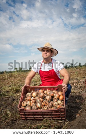 farmer harvested onions - stock photo