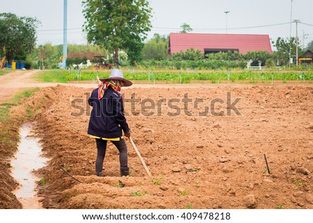 farmer hoeing vegetable - stock photo