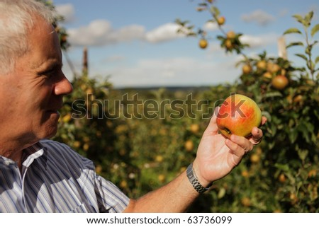 Farmer holding a red apple - stock photo