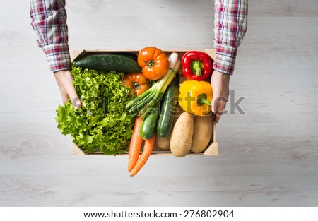 Farmer holding a wooden crate filled with fresh harvested vegetables from his garden - stock photo