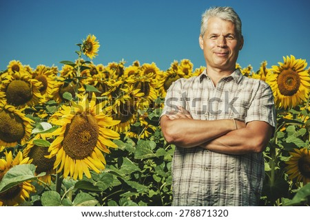 Farmer in a sunflower field. Senior farmer man is standing and smiling in a sunflower field with a blue sky background. Agriculture and nature concept.  - stock photo